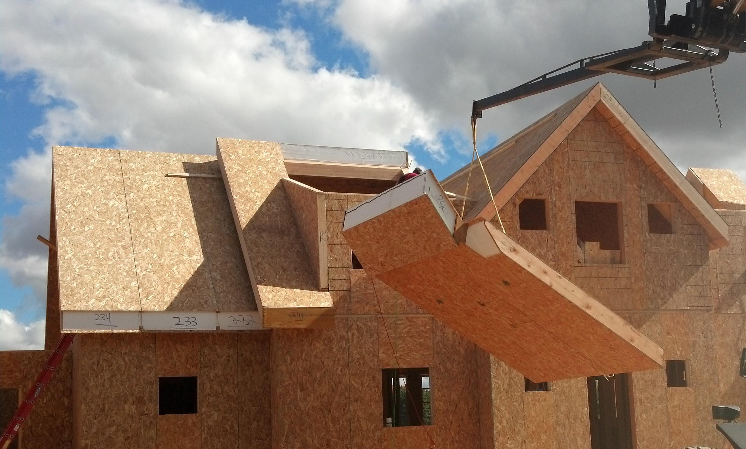 SIP roof panel