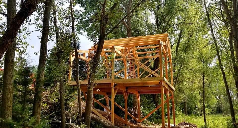 Stepp Treehouse 6