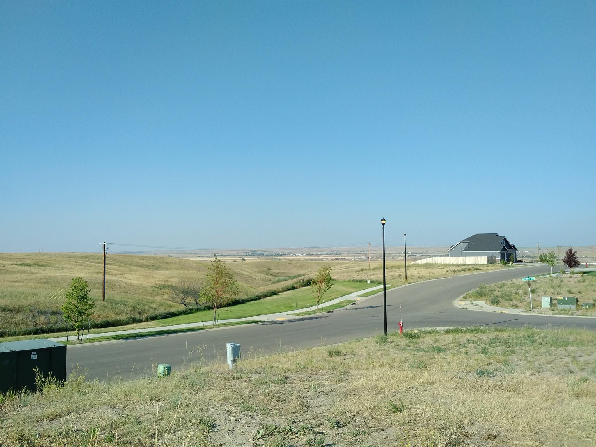 meadows landscape.jpg
